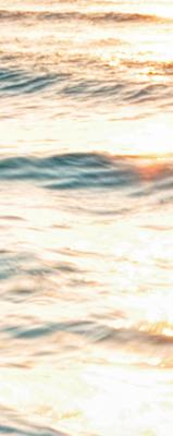 Autour de la Mer